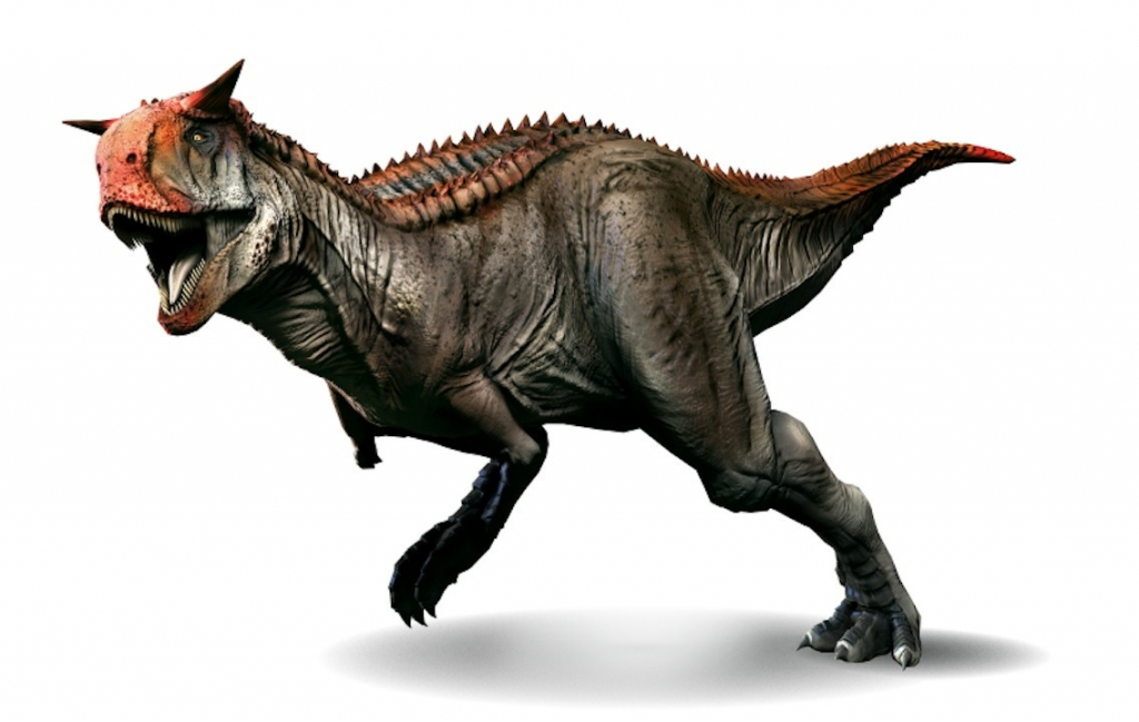 Is carbon hookup used for dinosaurs